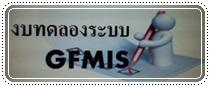 GFMIS